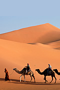 Tours around Morocco